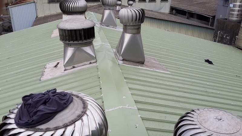 高雄鐵皮屋工廠 換鐵皮屋頂